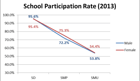 School-Participation-Rate-2013