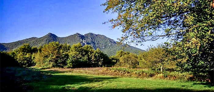 Monte Maggiore