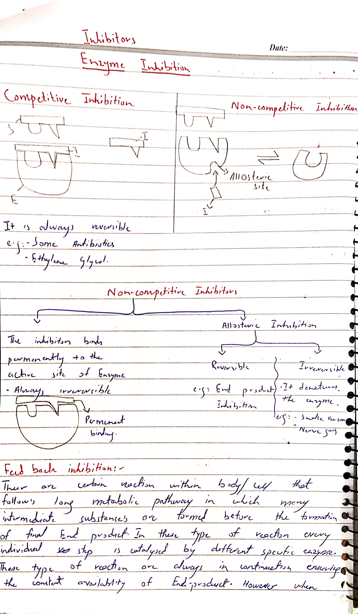 Enzymes._5