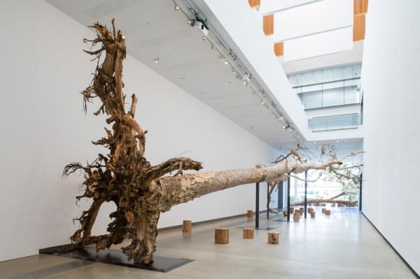 Falling Earth Cai Guo-qiang Studio