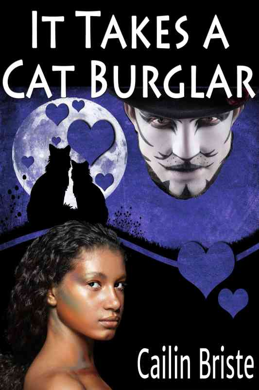It Takes a Cat Burglar: A Thief in Love Romance