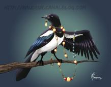 A stealing magpie