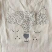 renard-garcon
