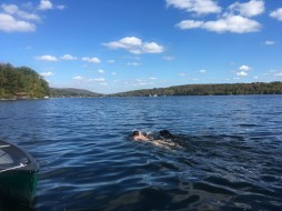 swimming-with-orvis