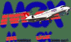mozambique express logo