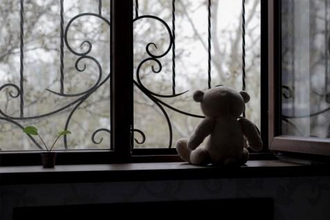 Hague Convention on International Child Abduction