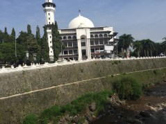 The Mosque. So beautiful!