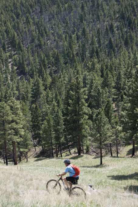My dad above the expanse of trees