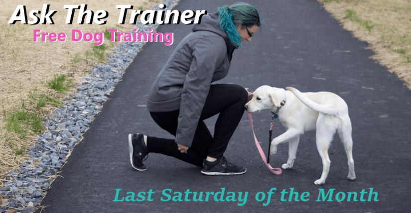 lehigh valley dog training