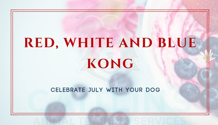Red, White and Blue Kong