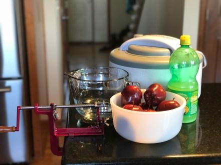 Preparing to make dehydrated apple rings