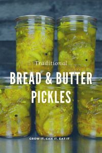 Traditional Bread & Butter Pickles