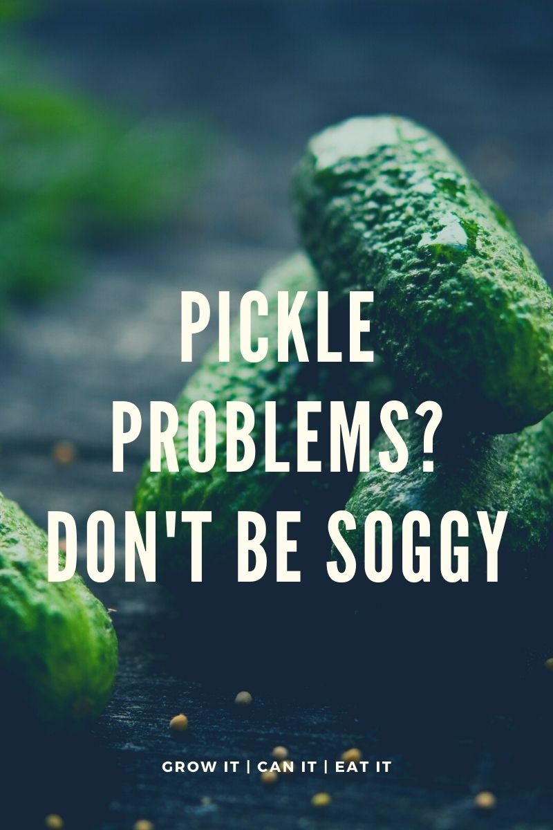 Pickle Problems? Don't be Soggy