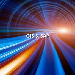 NOVARA GIS SAP Flyer_sm-1