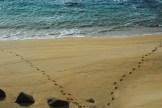 Praia da Lanzada