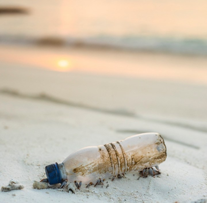 Mindful Living: 5 Plastic Items You can Replace Right Now That Will Save You Money and Reduce Plastic Pollution Worldwide