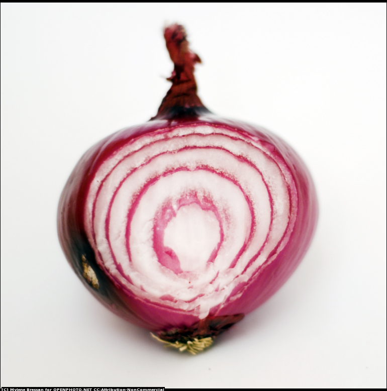 Red Onion Sliced