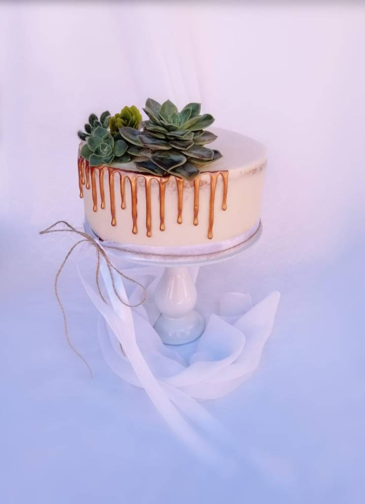 drip cake, succulents, trend cake  #cakes and other stuff