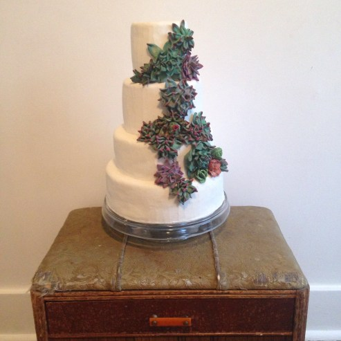 Succulent wedding cake