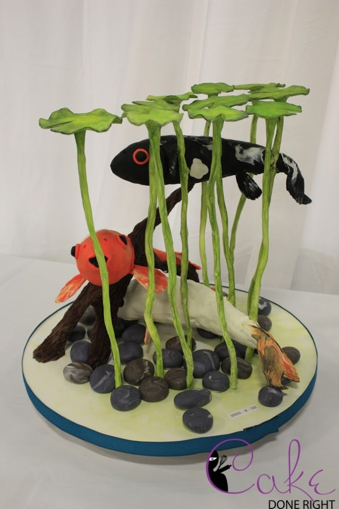 Chocolate Koi