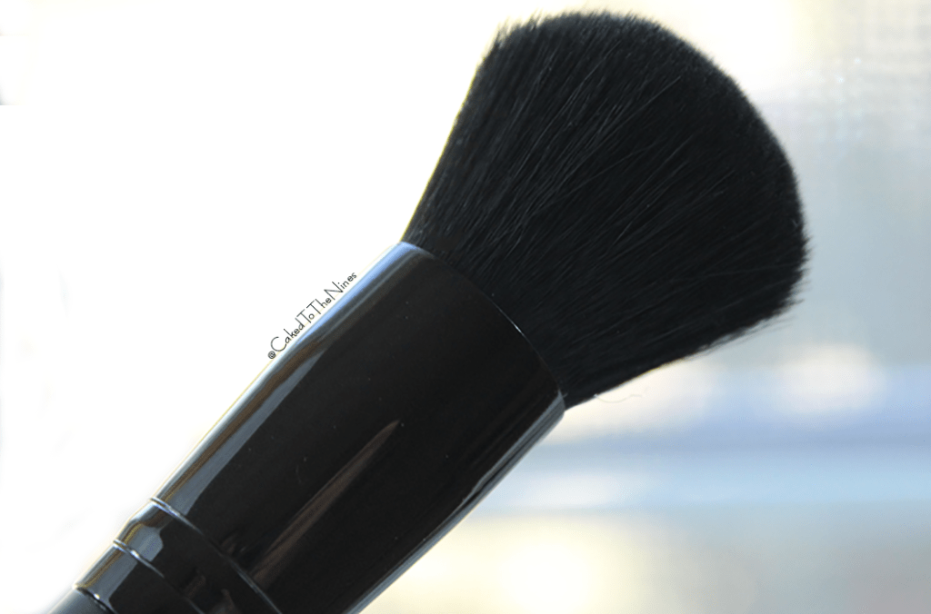 LAB 2 Beauty I'm Turning Pro brush kit
