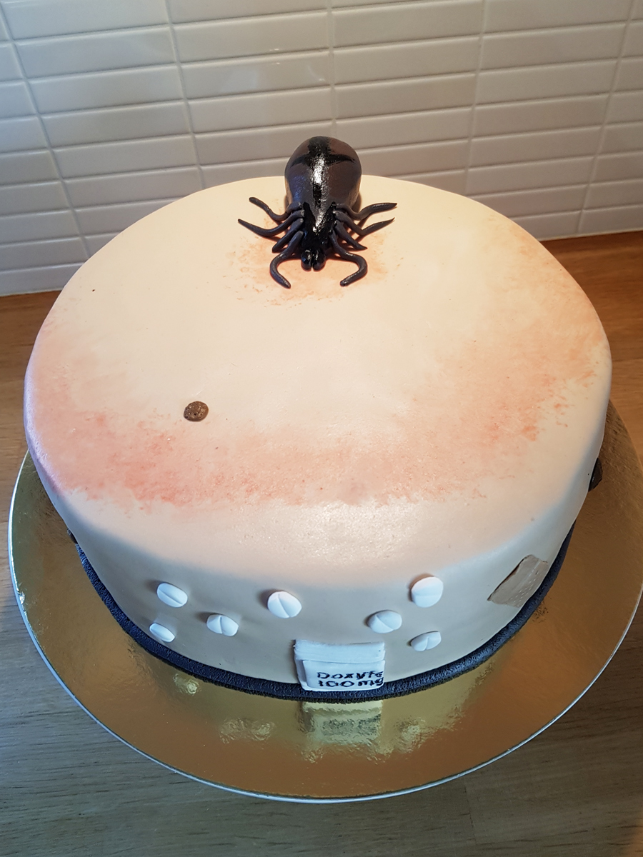 Tick cake - fästingtårta