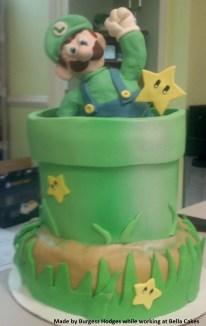 """""""luigi cake"""" """"pipe cake"""" """"nintendo cake"""" """"cartoon cake"""" """"video game cake"""""""