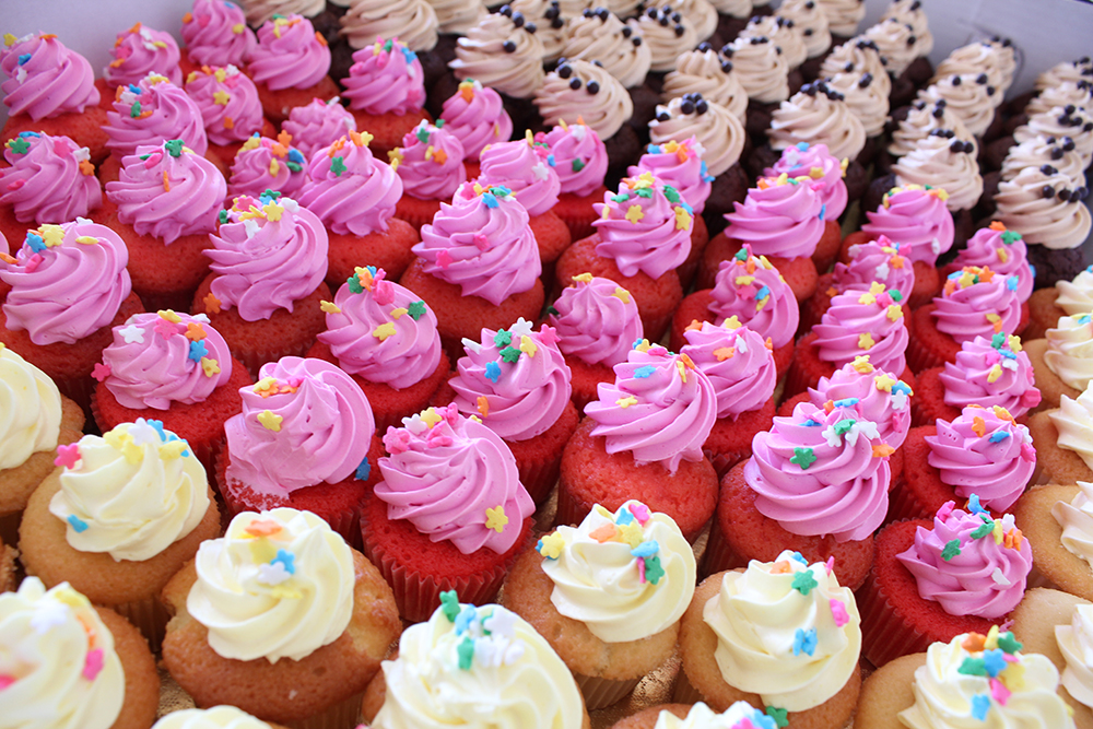 January Special: $5 off your mini cupcake order (24 ct)