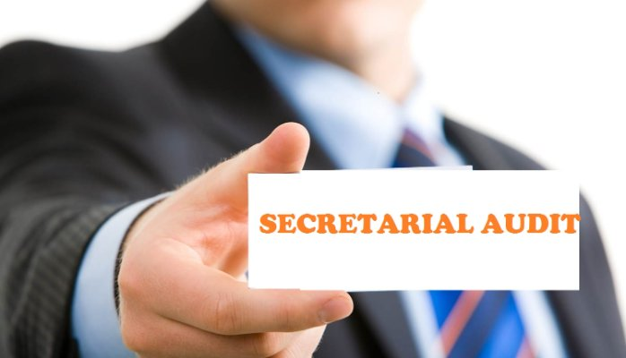 limits of Secretarial Audit