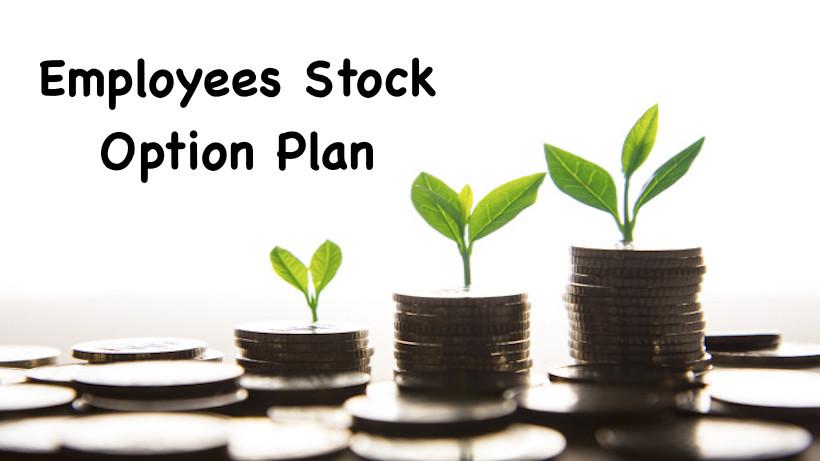 Employees Stock Option Plan