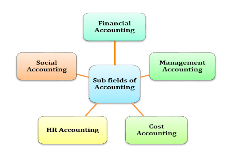 Sub fields of accounting