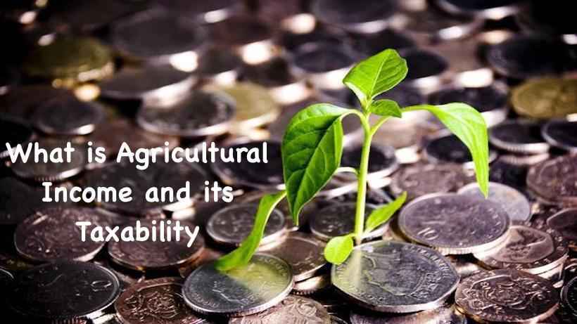 What is Agricultural Income and its Taxability
