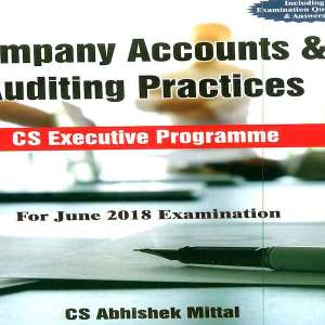 CS Executive Company Accounts and Auditing