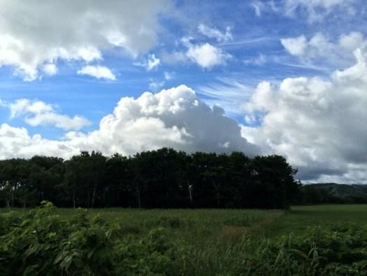宗谷本線 車窓 夏の雲