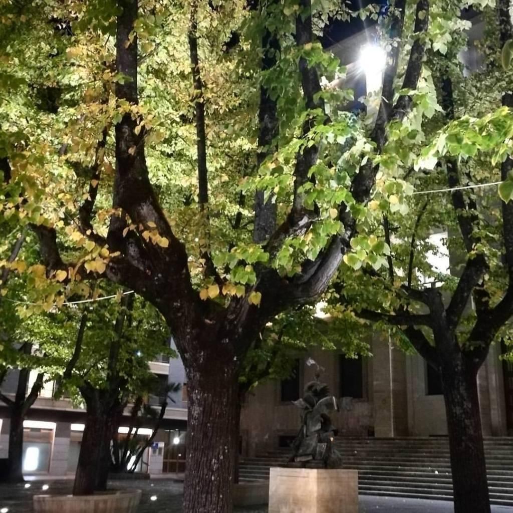 fall-cosenza-autumn