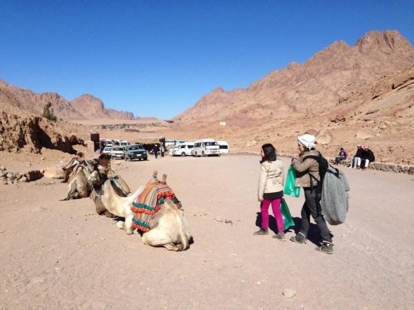 La poalele Muntelui Sinai, dupa un rasarit pentru care se urca sustinut ...