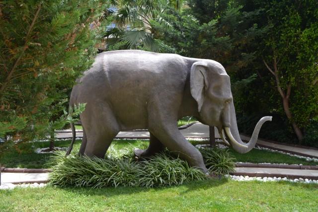 elefantul hotelului