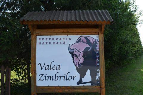Rezervatia de zimbri