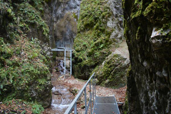 2 scari din cele 7