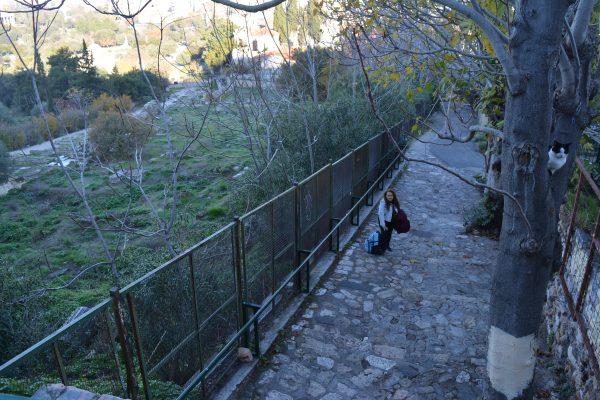 drumul-spre-acropole-3
