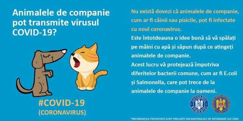 mituri-coronavirus