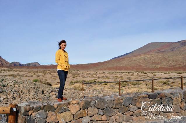 Tenerife_DSC_2116
