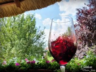 Excursie in Banat - Wine Princess-Balla Geza