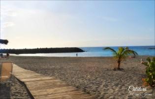 Tenerife Playa de Fanabe