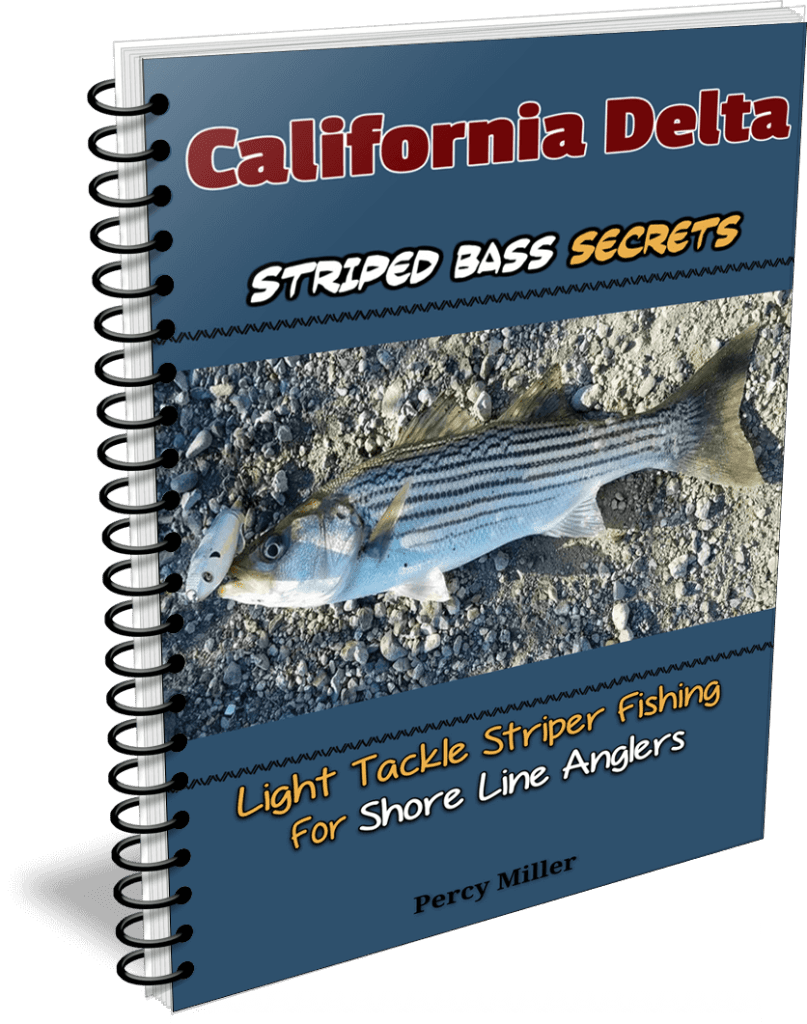 California Delta Light Tackle Striped Bass Fishing