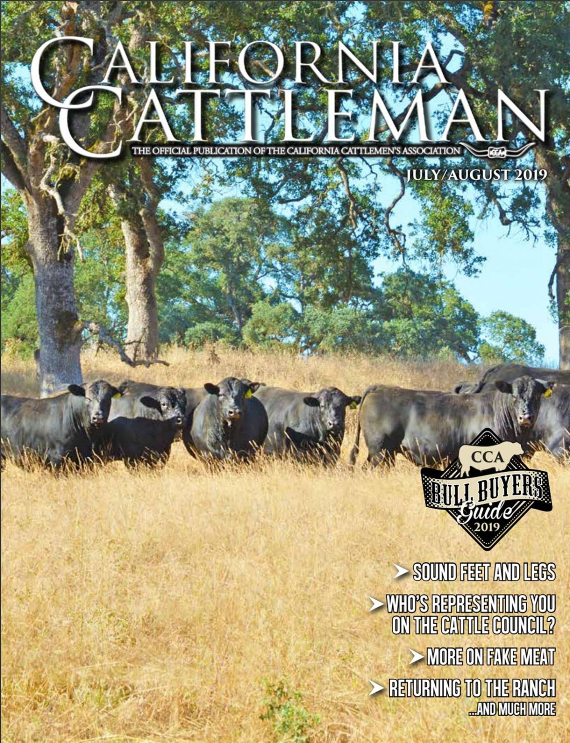 Bulls on the cover of the July/August 2019 issue of the California Cattleman