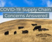 COVID-19: Supply Chain Concerns Answered