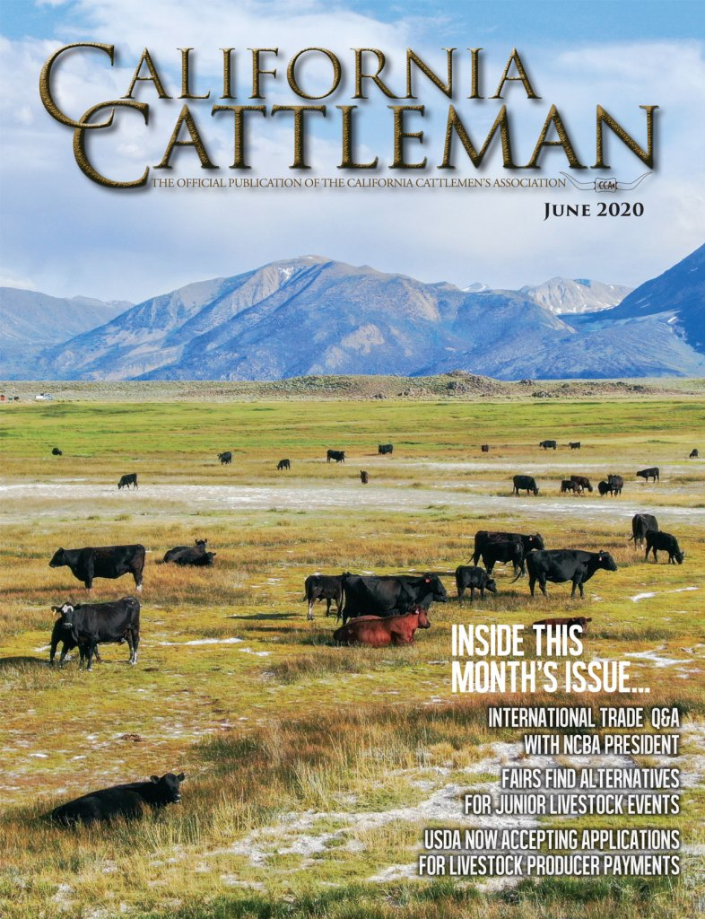 Link to newest issue of the California Cattleman