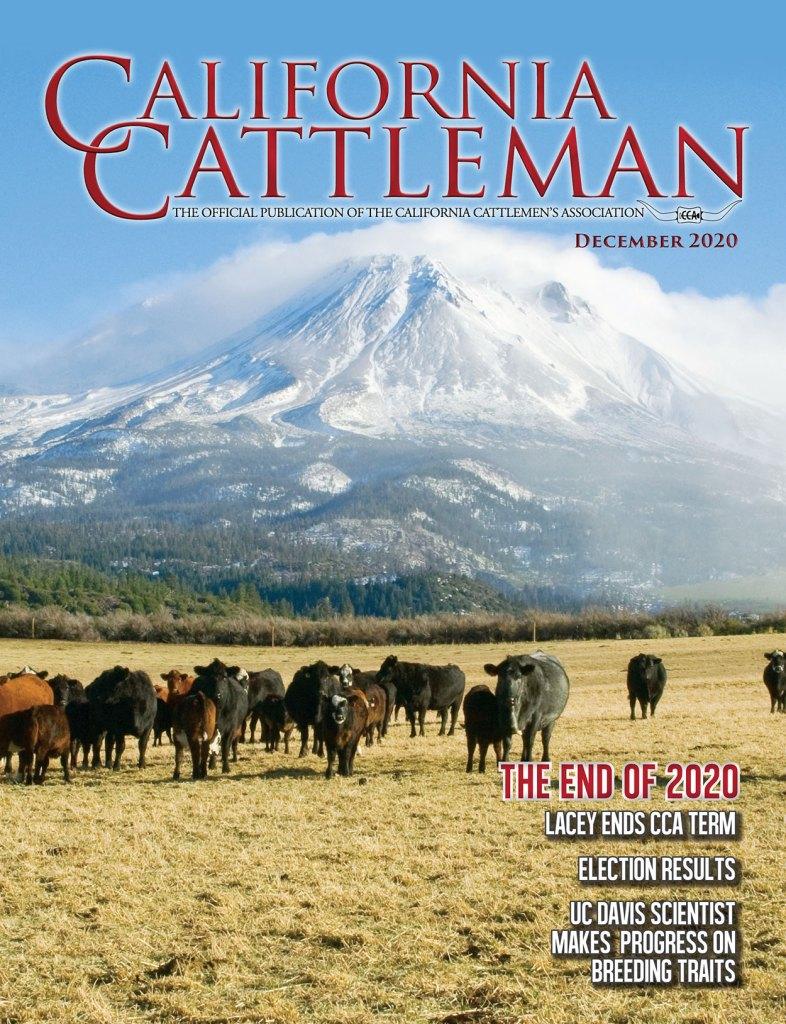 Dec. Magazine Cover