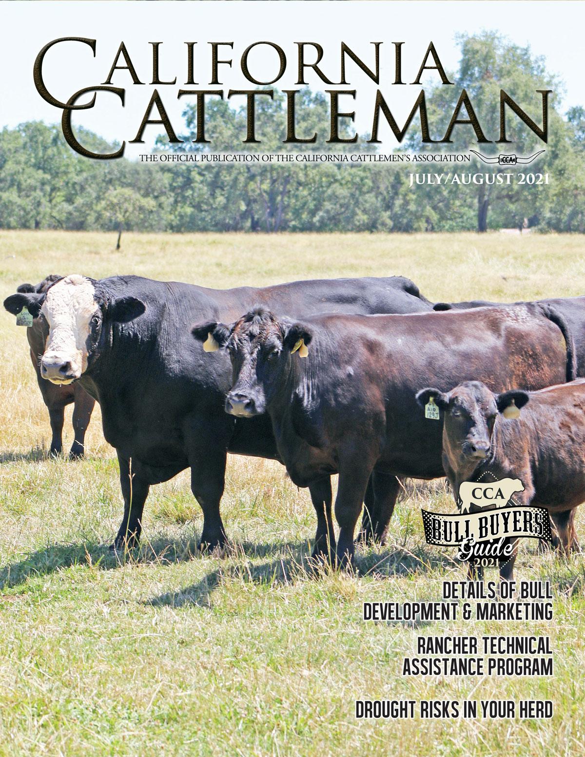 June Magazine Cover